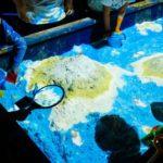 子供たちが遊べるVR・ARテーマパークを提供する「リトルプラネット」約6億円の資金調達