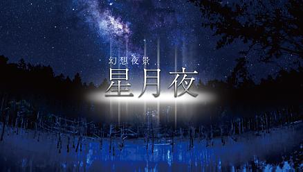 幻想夜景【星月夜】