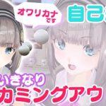 文化放送プロデュースVTuber『オワリカナ』が初の動画配信!!